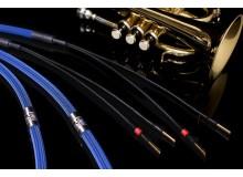 ALBEDO BLUE 喇叭線